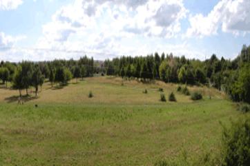 Hufewiesen Trachau