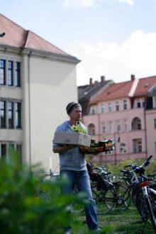 Pflanzentauschbörse @ Aprikosengarten Dresden