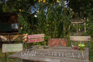 Brunch im Garten @ Gemeinschaftsgarten Johannstadt