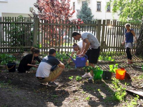Zusammenkommen im Garten