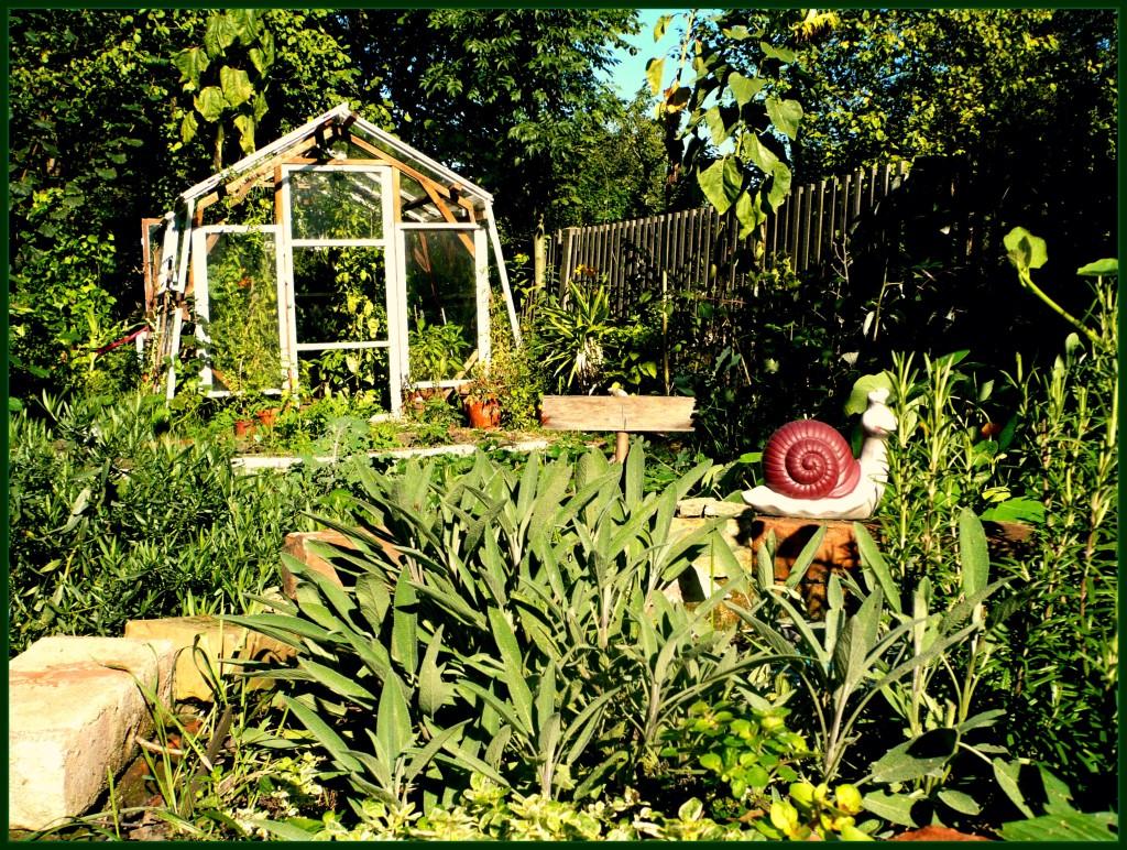 Sommerferienprogramm: Wo die wilden Gärtner leben @ Kleiner Garten Dresden Strehlen