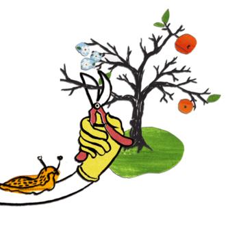 rauf & runter – naturgemäßer Obstbaumschnitt @ Gemeinschaftsgarten Gorbitz   Dresden   Sachsen   Deutschland