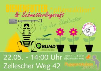 Bienenfutter & Schmetterlingssaft: Pflanz-Aktion @ Wiese, Zellscher Weg 42 | Dresden | Sachsen | Deutschland