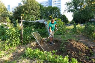 Grüne Vielfalt! Die Johannstädter Stadtgärten @ Treffpunkt: Vietnamesische Gärten Dresden