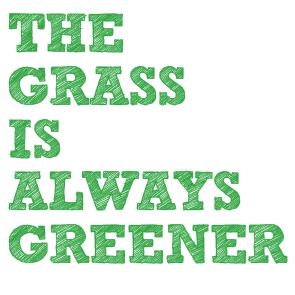 Gräser bestimmen und nutzen @ Hufewiesen Trachau | Dresden | Sachsen | Deutschland