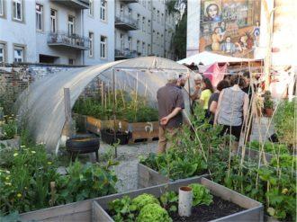 Das hechtgruen lädt zum Hechtfest ein @ Hechtgrün   Dresden   Sachsen   Deutschland