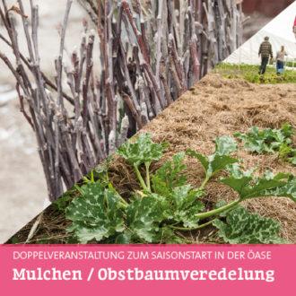 Frühling in der Öase 1+2: Mulchen und Obstbaumveredelung @ Öase Marsdorf