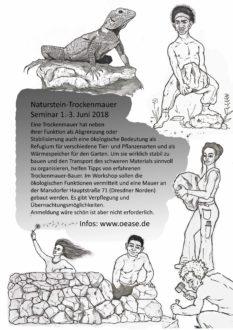 Naturstein-Trockenmauer Seminar @ Öase Marsdorf