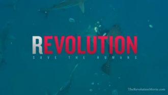 """""""(R)Evolution"""": Kinoabend im Garten @ Wurzelwerk Pieschen"""