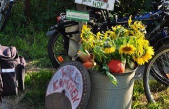 Hoffest: dein Hof – solidarische Gemüsekoop @ dein Hof
