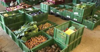 Solidarische Landwirtschaft Schellehof – Infoveranstaltung für Neu-Interessierte @ Container des Kulturzentrums Scheune