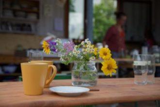 Reinen Tisch machen – Einsteigerwissen für eine saubere und sichere Küche @ Koko in der Alten Gärtnerei